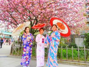 香港からの仲良しグループのお客さまです。伝統的なお着物をお選び頂きました????とても素敵ですね(^-^)v