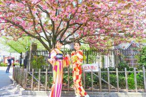 お二方とも矢羽柄のデザイン違いですね\(^o^)/艶やかなお着物が、レトロモダンで、とても素敵です!浅草散策楽しんで頂きました。
