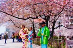 桜、なかよし
