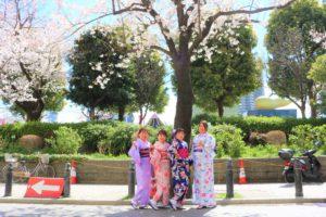 來自台灣的四位女士,都穿上了美麗的和服來賞櫻呢~