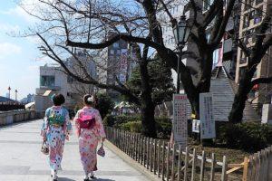 レトロな着物で浅草散歩!