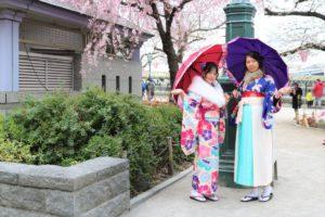 香港的兩位女士一同前來淺草賞櫻,穿著和服賞櫻最適合了!