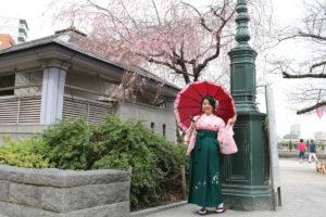 桜の木の下で袴でお写真