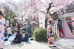 浅草観光を楽しんでくださいね❣️❣️〜 和服體驗,祝您逛的開心喔