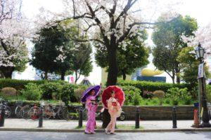 來自台灣的兩位女士體驗了和服,在櫻花樹下合影。