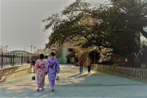 從香港來體驗漂亮和服。